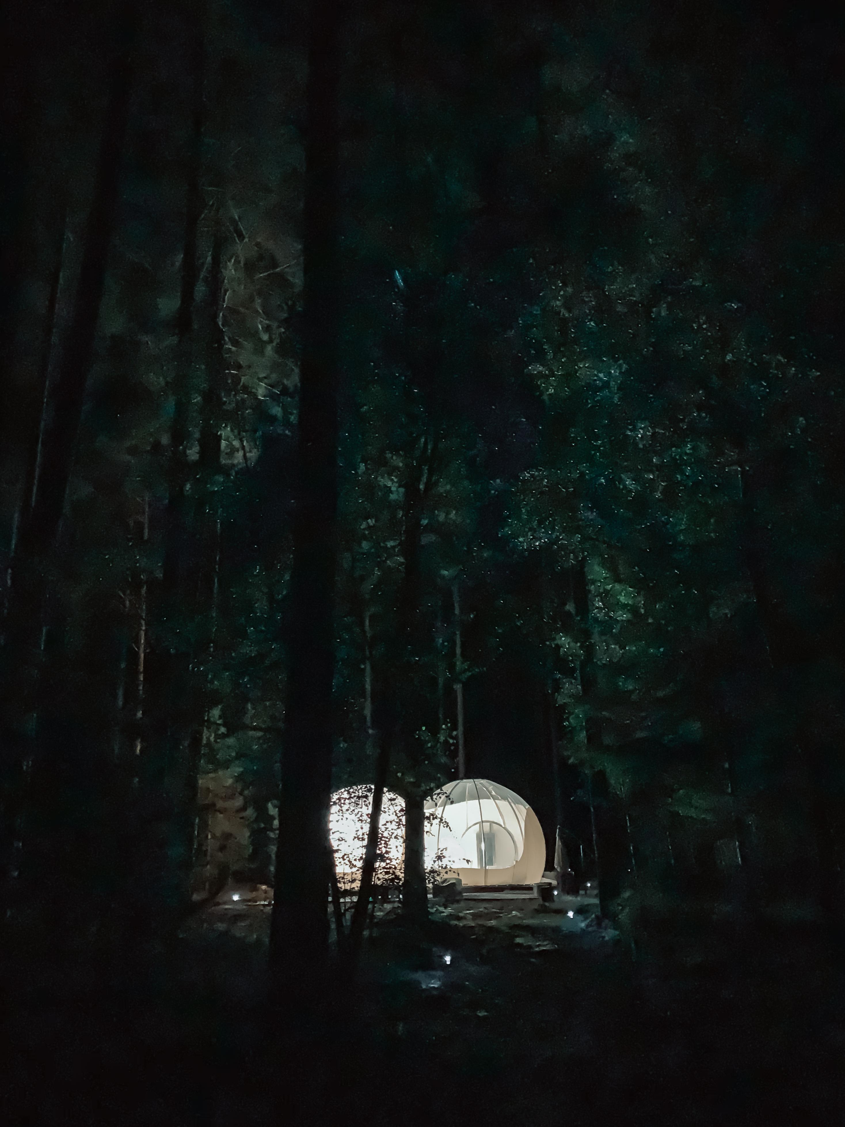 nuit dans une bulle