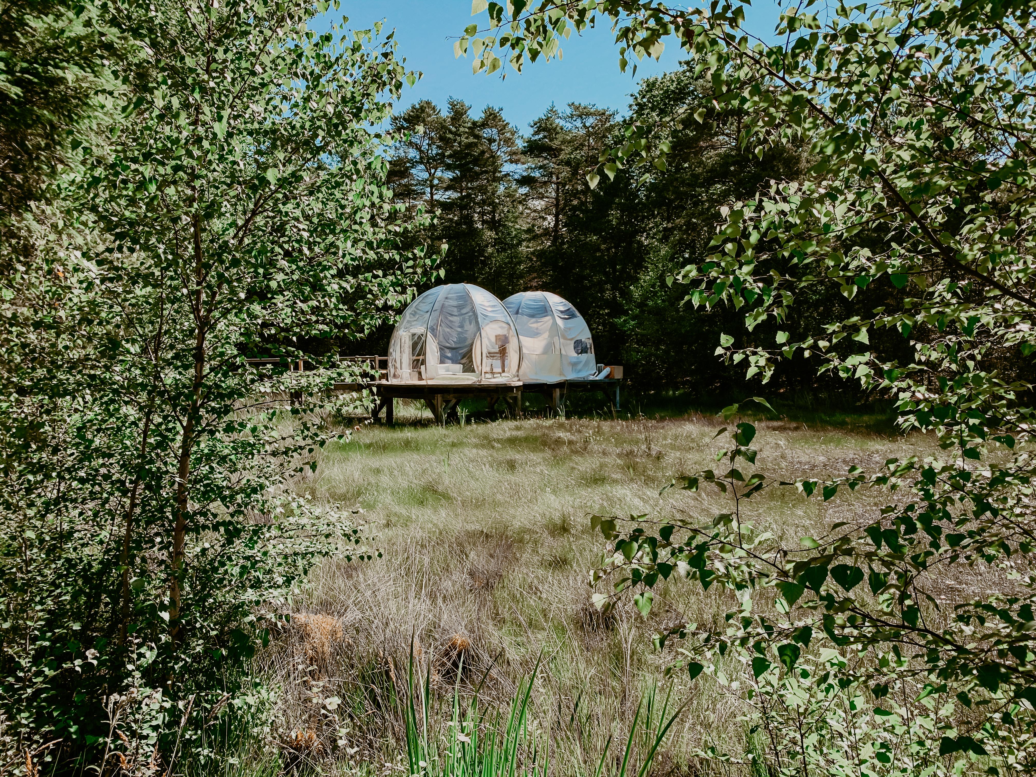 Bulles de Sologne | dormir dans une bulle | nuit insolite